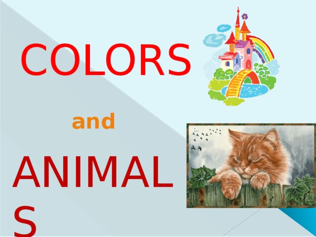 Colors and ANIMALS