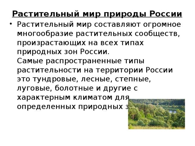 Растительный мир природы России