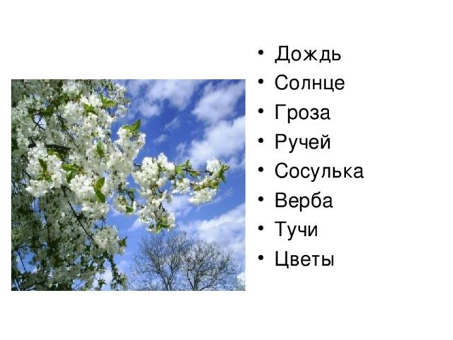 Дождь Солнце Гроза Ручей Сосулька Верба Тучи Цветы
