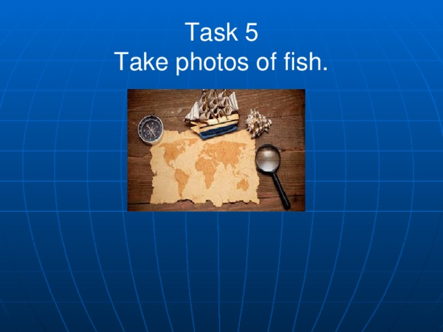 Task 5  Take photos of fish.