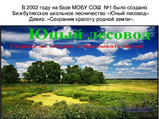 В 2002 году на базе МОБУ СОШ №1 было создано Бижбулякское школьное лесничество «Юный лесовод» Девиз: «Сохраним красоту родной земли».