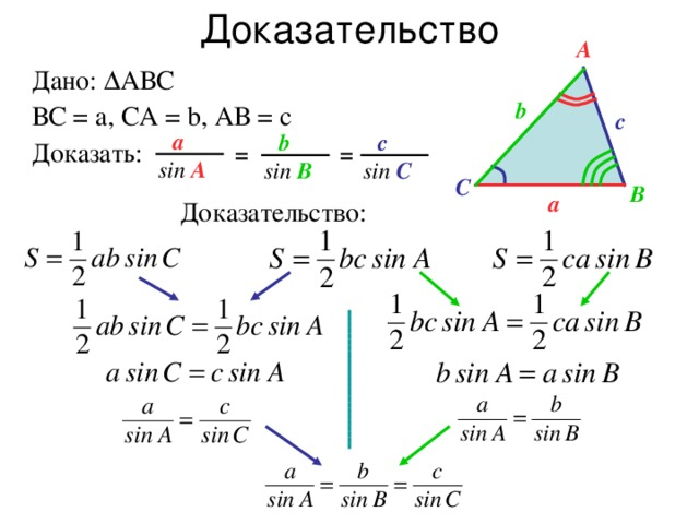 Доказательство A Дано:  АВС ВС = а, СА = b, АВ = с Доказать: b c a c b = = sin A sin B sin C С B a Доказательство: