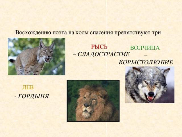 Восхождению поэта на холм спасения препятствуют три зверя:   РЫСЬ   – СЛАДОСТРАСТИЕ       ЛЕВ   - ГОРДЫНЯ  ВОЛЧИЦА  – КОРЫСТОЛЮБИЕ