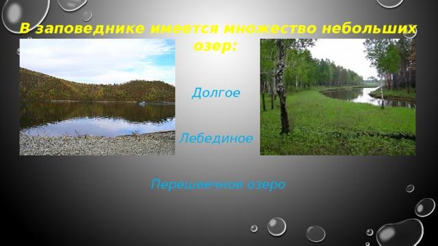В заповеднике имеется множество небольших озер:   Долгое   Лебединое   Перешеечное озеро