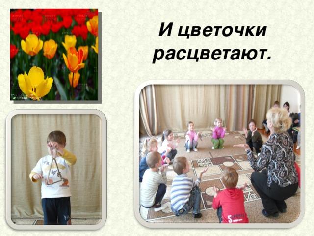 И цветочки расцветают.