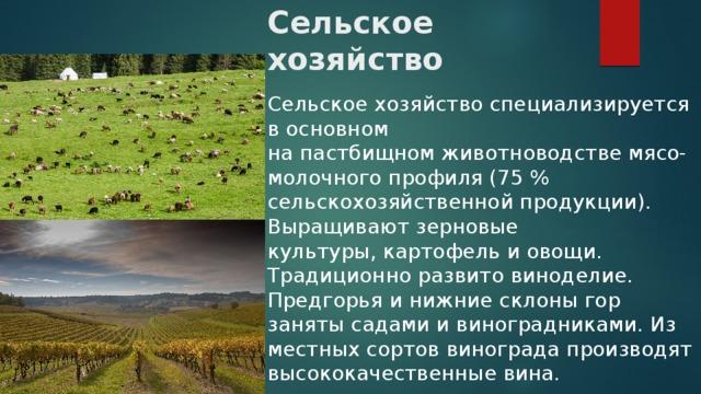 Сельское хозяйство Сельское хозяйство специализируется в основном напастбищномживотноводствемясо-молочного профиля (75% сельскохозяйственной продукции). Выращивают зерновые культуры,картофельиовощи. Традиционно развитовиноделие. Предгорья и нижние склоны гор занятысадамиивиноградниками. Из местныхсортоввинограда производят высококачественные вина.