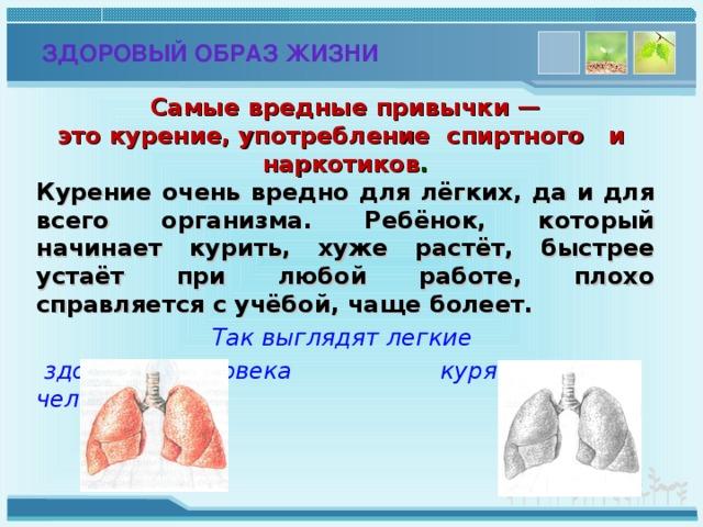 ЗДОРОВЫЙ ОБРАЗ ЖИЗНИ Самые вредные привычки —  это курение, употребление спиртного и наркотиков . Курение очень вредно для лёгких, да и для всего организма. Ребёнок, который начинает курить, хуже растёт, быстрее устаёт при любой работе, плохо справляется с учёбой, чаще болеет. Так выглядят легкие  здорового человека   курящего человека