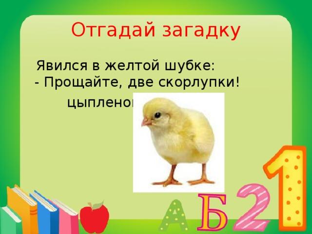 Отгадай загадку  Явился в желтой шубке:  - Прощайте, две скорлупки!  цыпленок