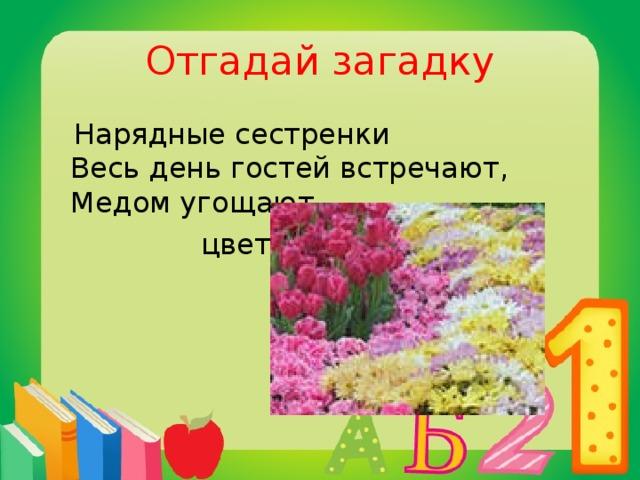 Отгадай загадку  Нарядные сестренки  Весь день гостей встречают,  Медом угощают.  цветы