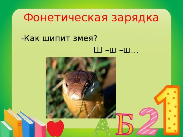Фонетическая зарядка  -Как шипит змея?  Ш –ш –ш…