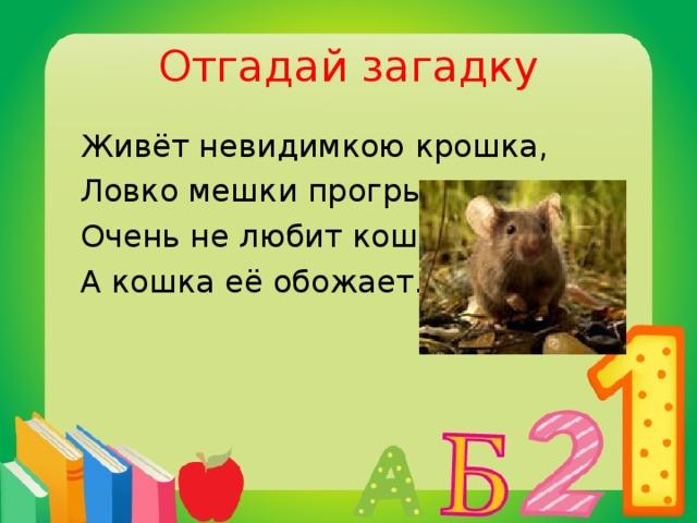 Отгадай загадку  Живёт невидимкою крошка,  Ловко мешки прогрызает,  Очень не любит кошку,  А кошка её обожает.  мышь