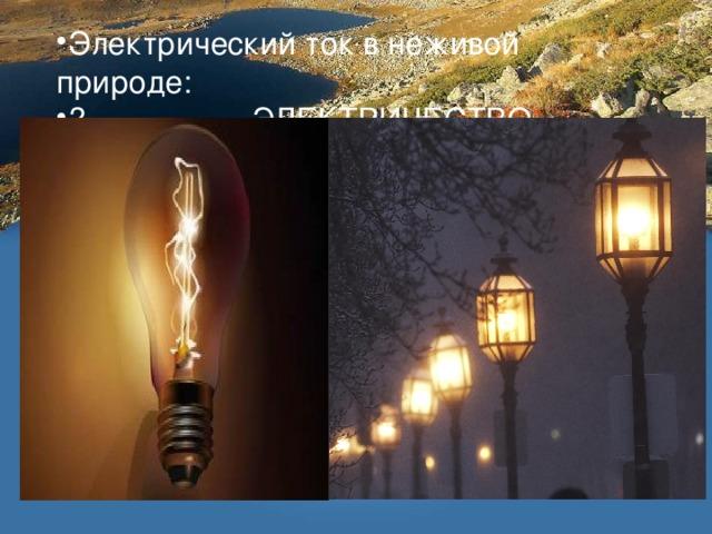 Электрический ток в неживой природе:  ЭЛЕКТРИЧЕСТВО,