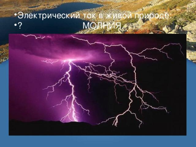 Электрический ток в живой природе:  МОЛНИЯ,