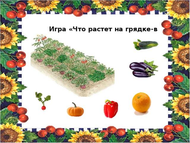 Игра «Что растет на грядке-в огороде»