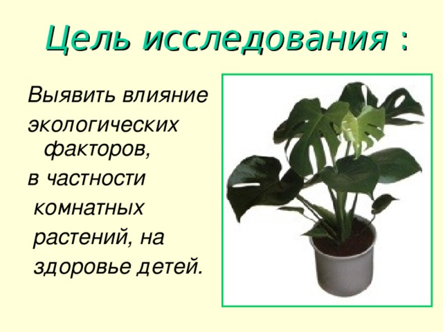 Цель исследования :   Выявить влияние экологических факторов, в частности  комнатных  растений, на  здоровье детей.