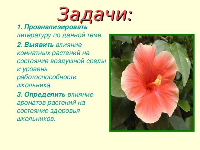 Задачи:    1.  Проанализировать литературу по данной теме.  2 . Выявить влияние комнатных растений на состояние воздушной среды и уровень работоспособности школьника.  3. Определить влияние ароматов растений на состояние здоровья школьников.