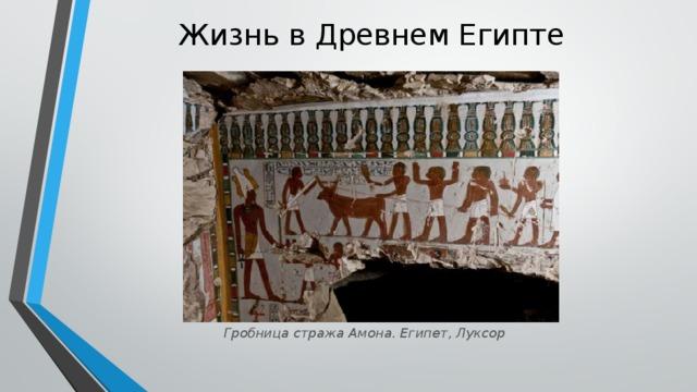 Жизнь в Древнем Египте   Гробница стража Амона. Египет, Луксор