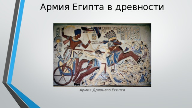 Армия Египта в древности   Армия Древнего Египта