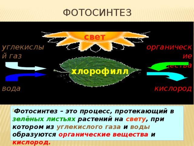 Фотосинтез свет углекислый газ органические вещества хлорофилл вода кислород Фотосинтез – это процесс, протекающий в  зелёных листьях  растений на  свету , при котором из  углекислого  газа  и  воды  образуются  органические вещества и  кислород. 16
