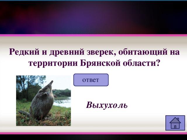 Редкий и древний зверек, обитающий на территории Брянской области? ответ Выхухоль