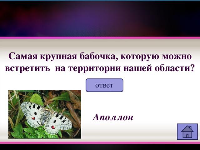 Самая крупная бабочка, которую можно встретить на территории нашей области? ответ Аполлон