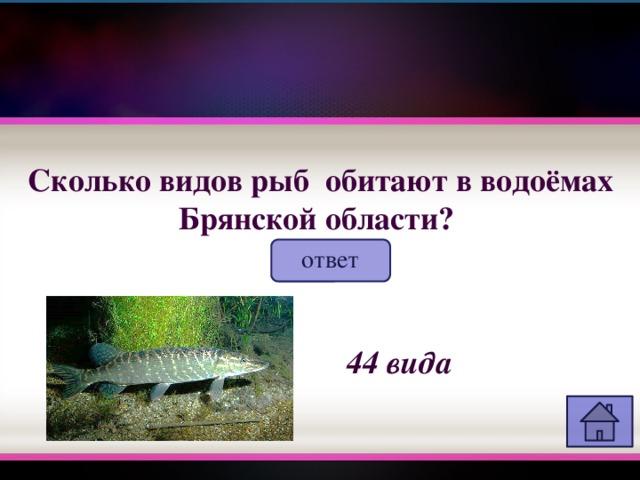 Сколько видов рыб обитают в водоёмах Брянской области?  ответ 44 вида