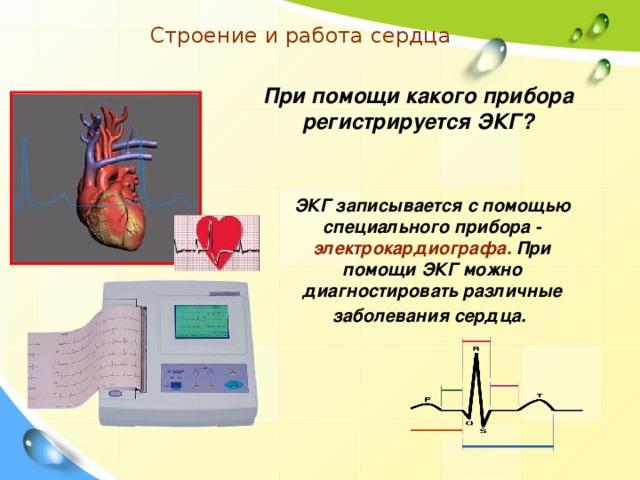 Строение и работа сердца При помощи какого прибора регистрируется ЭКГ? ЭКГ записывается с помощью специального прибора - электрокардиографа. При помощи ЭКГ можно диагностировать различные заболевания сердца.
