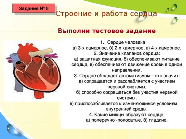 Задание № 5 Строение и работа сердца  Выполни тестовое задание Сердце человека:  а) 3-х камерное, б) 2-х камерное, в) 4-х камерное.  2. Значение клапанов сердца:  а) защитная функция, б) обеспечивают питание сердца, в) обеспечивают движение крови в одном направлении.  3. Сердце обладает автоматизмом – это значит:  а) сокращается и расслабляется с участием нервной системы,  б) способно сокращаться без участия нервной системы, в) приспосабливается к изменяющимся условиям внутренней среды.  4. Какие мышцы образуют сердце:  а) поперечно -полосатые, б) гладкие.