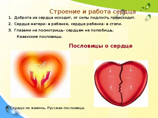 Строение и работа сердца Доброта из сердца исходит, от силы подлость происходит. Сердце матери- в ребенке, сердце ребенка- в степи. Глазами не посмотришь- сердцем не полюбишь.  Казахские пословицы. Пословицы о сердце 4. Сердце не камень. Русская пословица.
