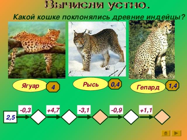 Какой кошке поклонялись древние индейцы? Рысь 0,4 Ягуар 1,4 Гепард 4 +1,1 +4,7 -3,1 -0,9 -0,3   2,5