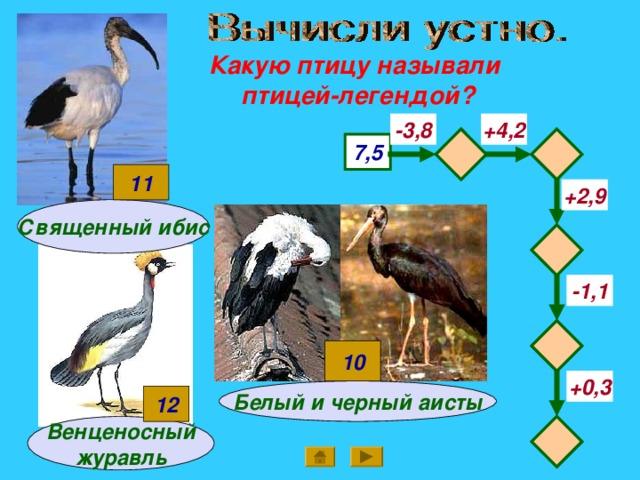 Какую птицу называли птицей-легендой? -3,8 +4,2   7,5 11 +2,9 Священный ибис  -1,1  10 +0,3 Белый и черный аисты 12  Венценосный журавль