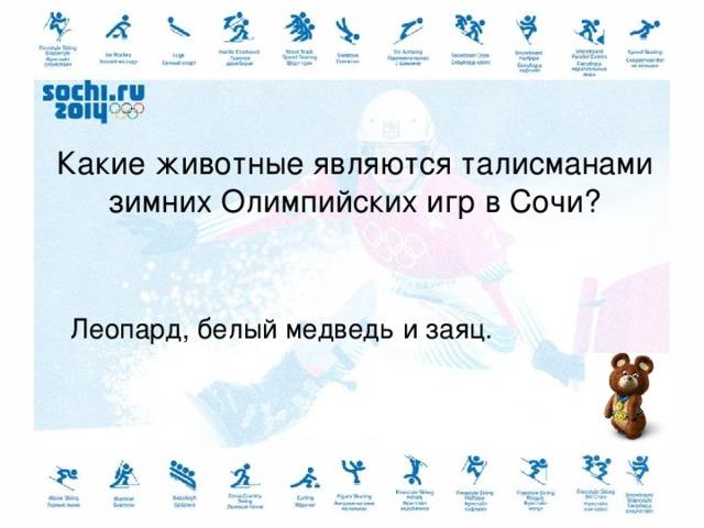 Какие животные являются талисманами зимних Олимпийских игр в Сочи? Леопард, белый медведь и заяц.