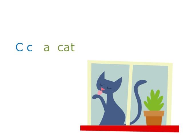 C c  a cat