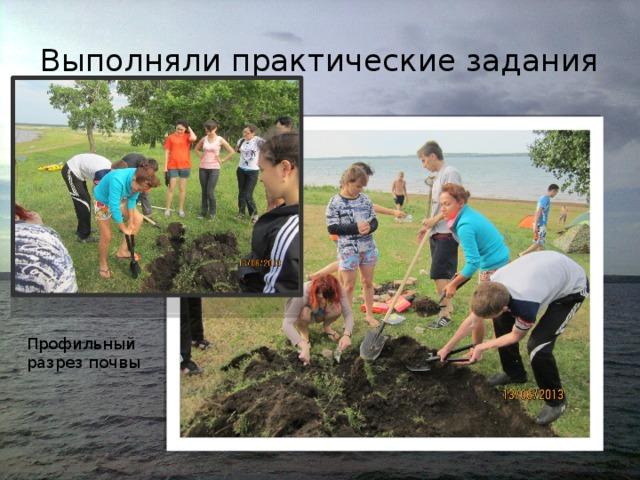 Выполняли практические задания Профильный разрез почвы