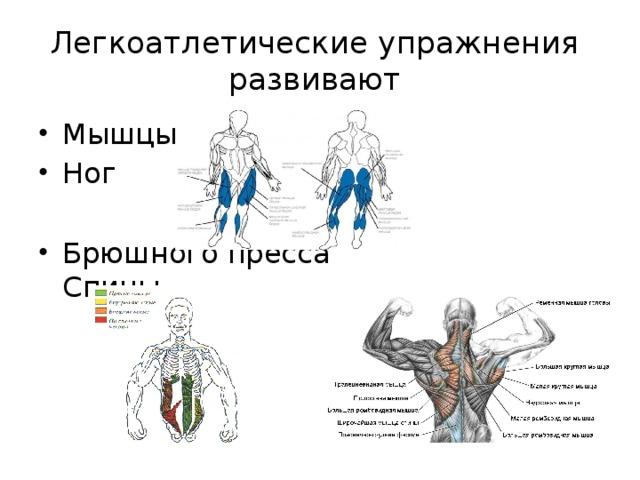 Легкоатлетические упражнения развивают