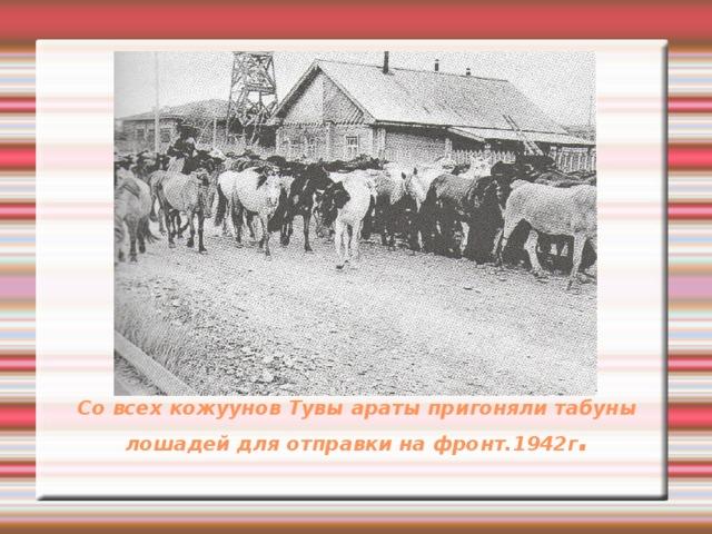 Со всех кожуунов Тувы араты пригоняли табуны лошадей для отправки на фронт.1942г .