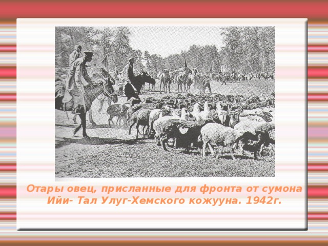 Отары овец, присланные для фронта от сумона Ийи- Тал Улуг-Хемского кожууна. 1942г.