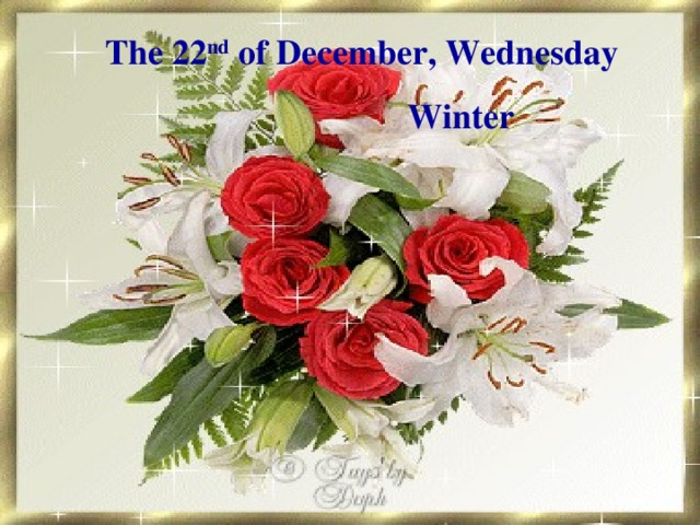 The 22 nd of December,  Wednesday    Winter