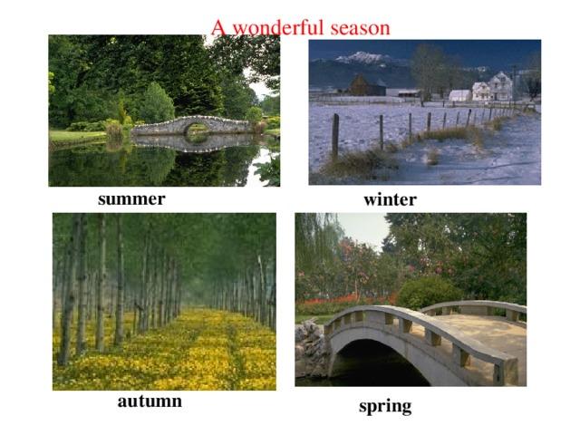 A wonderful season summer winter autumn spring