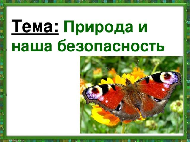 Тема:  Природа и наша безопасность