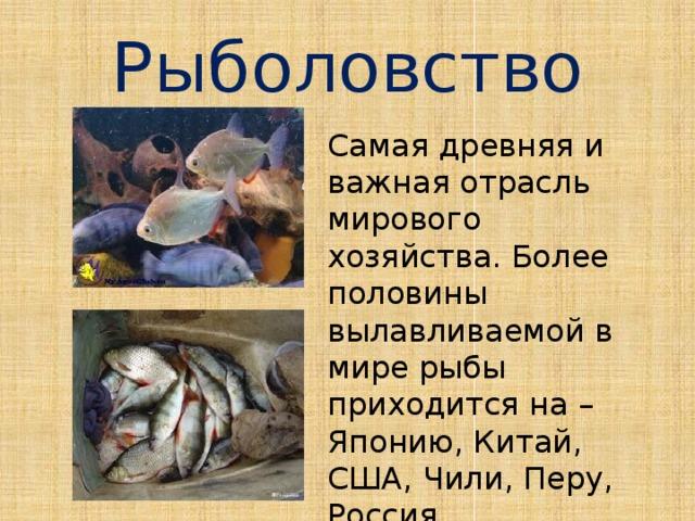 Рыболовство Самая древняя и важная отрасль мирового хозяйства. Более половины вылавливаемой в мире рыбы приходится на – Японию, Китай, США, Чили, Перу, Россия.