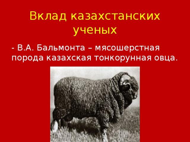 Вклад казахстанских ученых - В.А. Бальмонта – мясошерстная порода казахская тонкорунная овца.