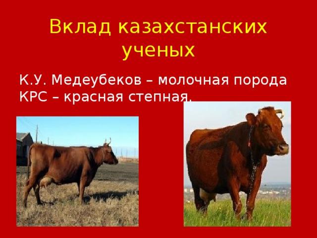 Вклад казахстанских ученых К.У. Медеубеков – молочная порода КРС – красная степная.