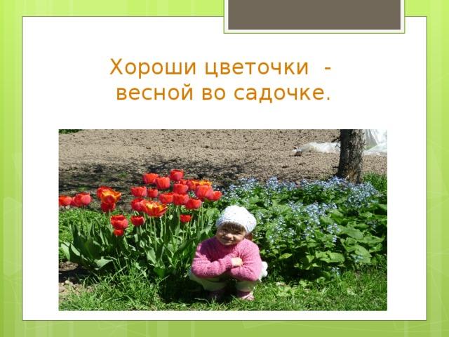 Хороши цветочки -  весной во садочке.