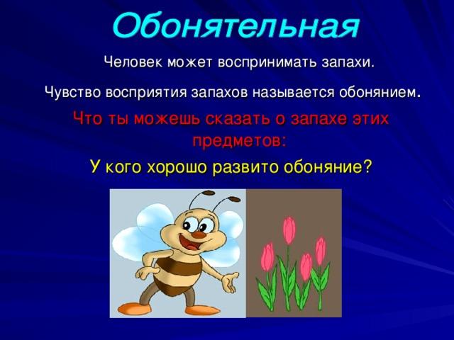 Человек может воспринимать запахи.  Чувство восприятия запахов называется обонянием . Что ты можешь сказать о запахе этих предметов: У кого хорошо развито обоняние?