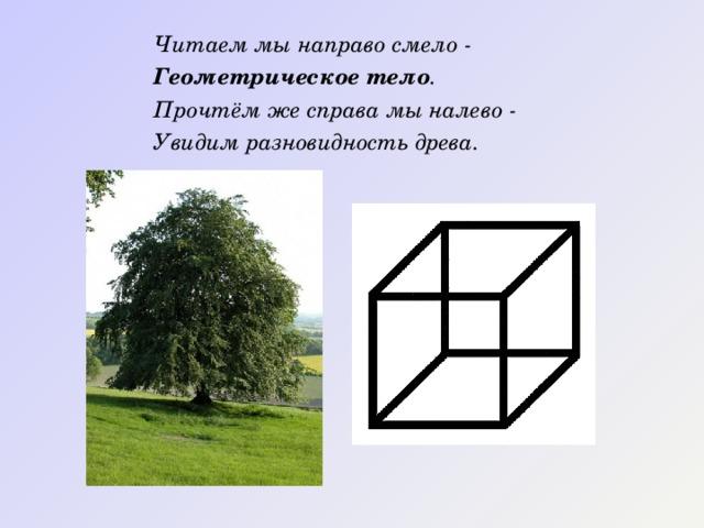 Читаем мы направо смело - Геометрическое тело . Прочтём же справа мы налево - Увидим разновидность древа.