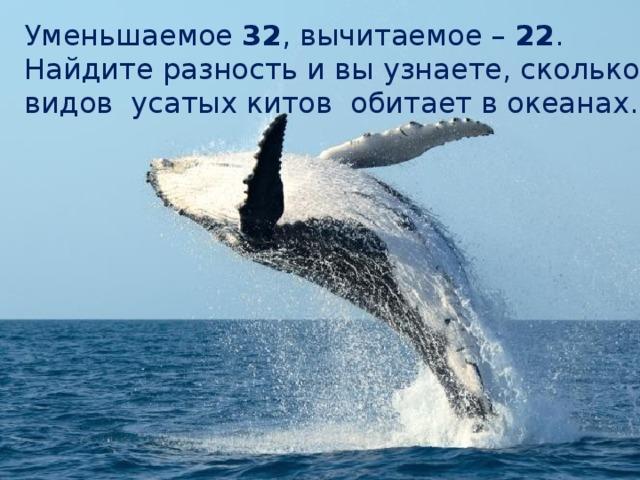 Делимое. Делитель Уменьшаемое 32 , вычитаемое – 22 . Найдите разность и вы узнаете, сколько видов усатых китов обитает в океанах.