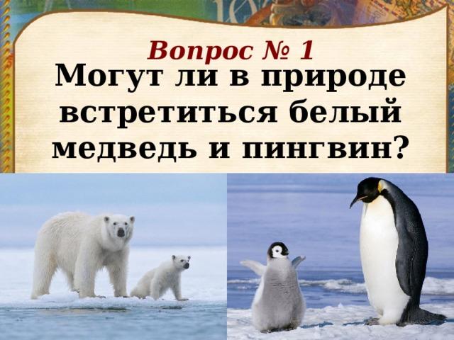 Вопрос № 1 Могут ли в природе встретиться белый медведь и пингвин?