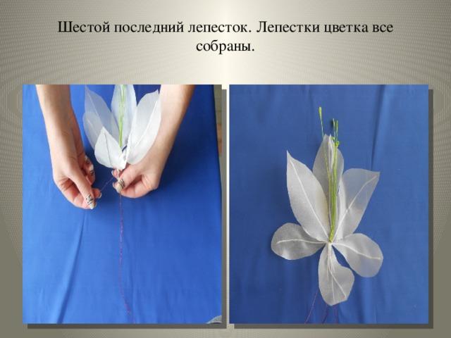 Шестой последний лепесток. Лепестки цветка все собраны.