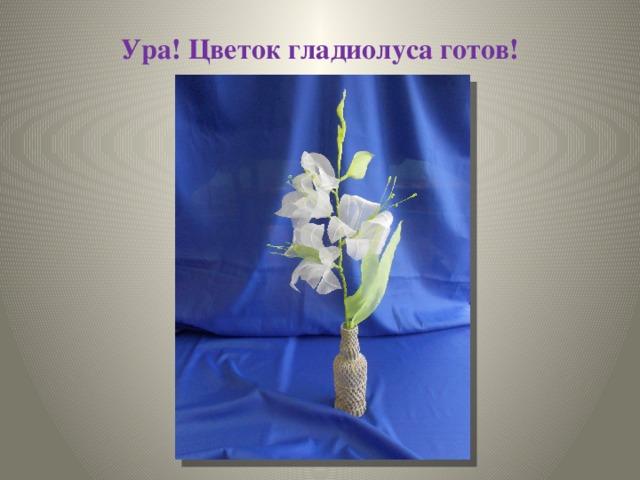 Ура! Цветок гладиолуса готов!